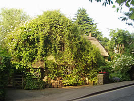 Wizards Thatch Macclesfield Rd, Alderley Edge